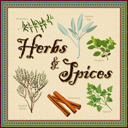 origanum: Herbs and Spices; Rosemary, Garden Sage, French Chervil, stick Cinnamon, English Thyme, Italian Oregano; distressed mosaic frame and background