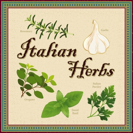 Italian Herbs; Rosemary, Garlic, Oregano, Sweet Basil and Flat Leaf Parsley; distressed mosaic frame and background  Illustration