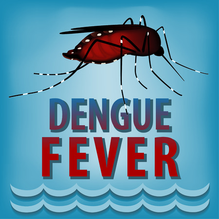 Dengue Fever Mosquito, infectious virus disease, standing water, blue background  background