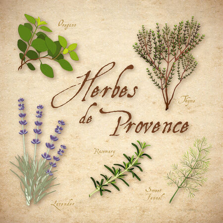herbes: Herbes de Provence, Lavender, Rosemary, Thyme, Sweet Fennel, Oregano  Classic blend of aromatic herbs from southwest France on rustic texture background
