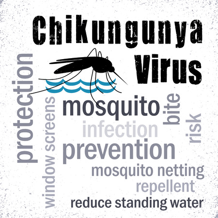 Chikungunya Virus, mosquito, prevention, protection word cloud, graphic illustration with grunge background.