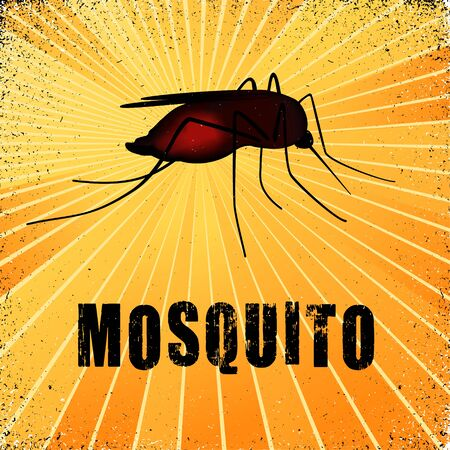 Mosquito, graphic illustration with gold ray grunge background. Ilustração