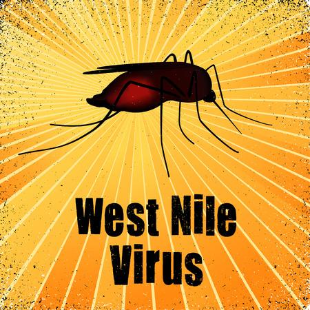 West Nile Virus, mosquito, graphic illustration with gold ray grunge background. Ilustração
