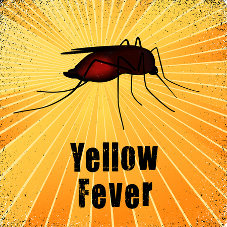 Yellow Fever, mosquito, graphic illustration with gold ray grunge background.