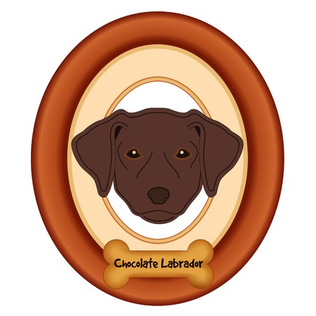 rescue dog: Chocolate Labrador Retriever dog portrait in cherry wood mat frame dog bone treat tag isolated on white background. Illustration
