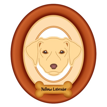 rescue dog: Yellow Labrador Retriever dog portrait in cherry wood mat frame dog bone treat tag isolated on white background. Illustration