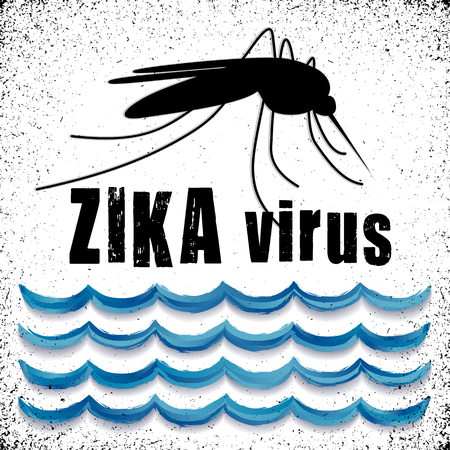 sub tropical: Zika Virus with mosquito over standing water grunge graphic illustration. Illustration