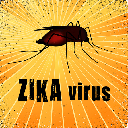 infected mosquito: Zika virus mosquito with gold ray grunge background.