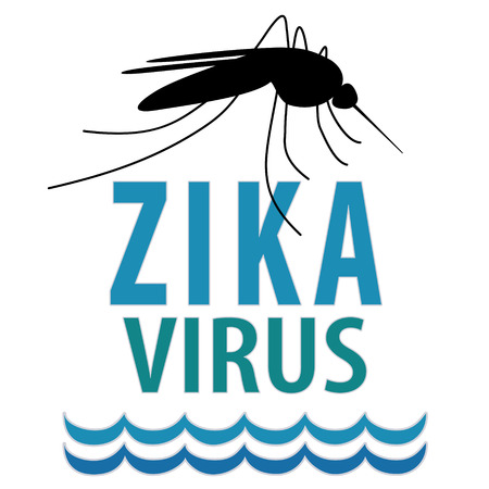 infectious disease: Zika virus, mosquito, standing water graphic illustration.