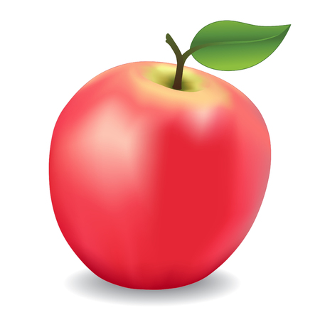 アップル、ピンク、天然果樹園庭フルーツ系に分離は白背景です。  イラスト・ベクター素材