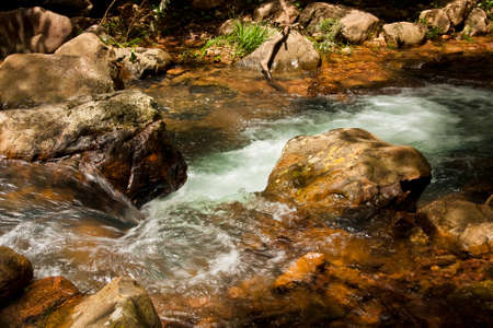 samll: Samll River Flowing in the Forest