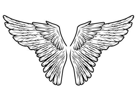 Two bird wings owl eagle angel or hawk Ilustracje wektorowe