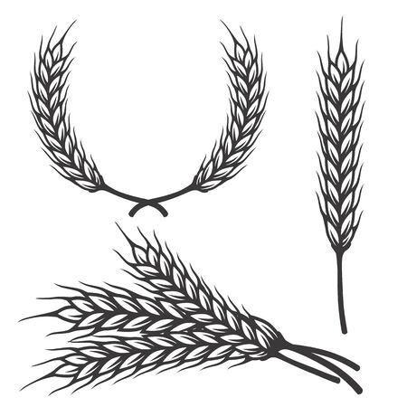 Different angles barley spike for art brush for bar menu or pattern brush element