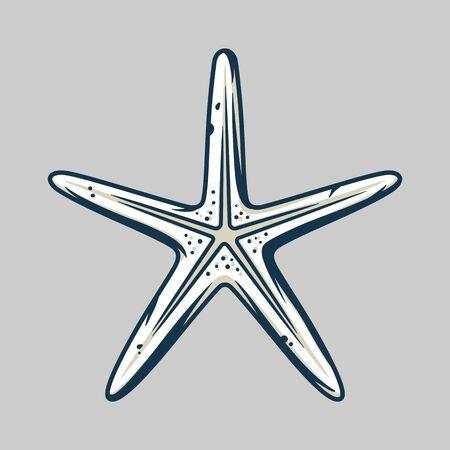 marine nautical oceanic star fish, exotic starfish