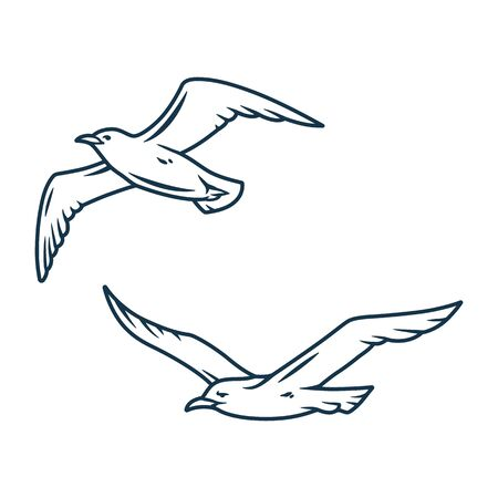 Seagull in the sky for nautical marine 일러스트