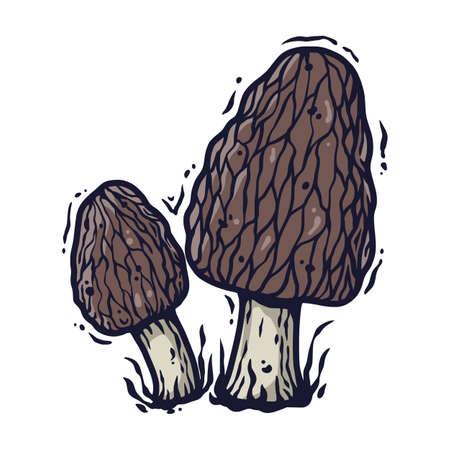 Vector morel mushroom for vegan food cooking Çizim