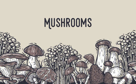 Autumn forest mushroom picking, vegan menu pattern