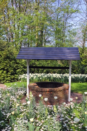 Draw-well in flower garden in the spring photo