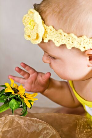 Baby looking and touching a  flower Stock Photo - 15021710