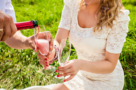 Couple celebrating together at picnic photo