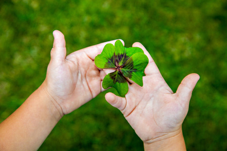 Leaf of clover in small childs hands photo