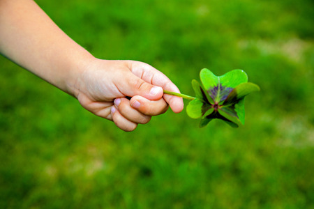 Leaf of clover in small child's hand photo