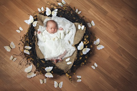 butterflys: Portrait of newborn baby girl while lying in a nest with butterflys Stock Photo
