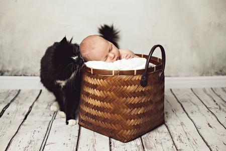 Sleeping newborn baby boy in a wicker basket with a soft fur blanket and black cat