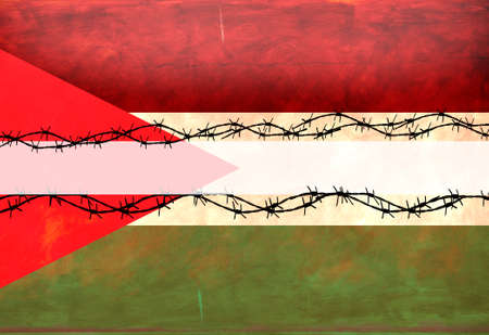middle east crisis: Palestinian Flag Stock Photo