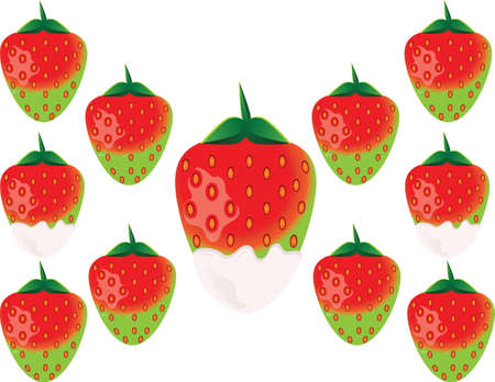 indulgent: Delicious green strawberry in white chocolate. Vector