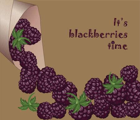 raspberry pink: Blackberries Time! Fresh and juicy dessert. Vector