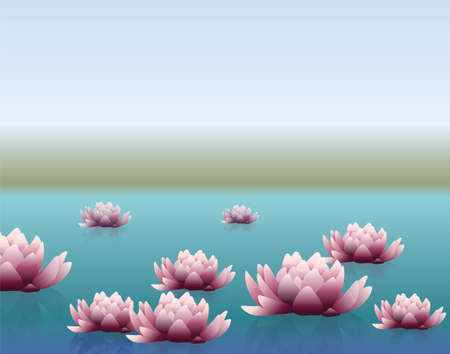 water lilly: Water lily flowers in lake. Vector