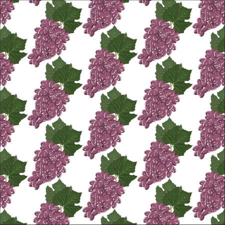 red grape: Grapes clusters pattern. Vector
