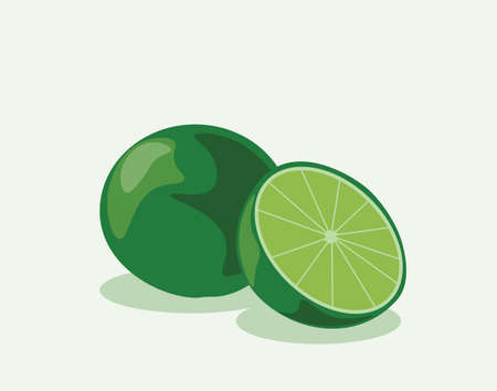 fruited: Lime fruit isolated. Vector