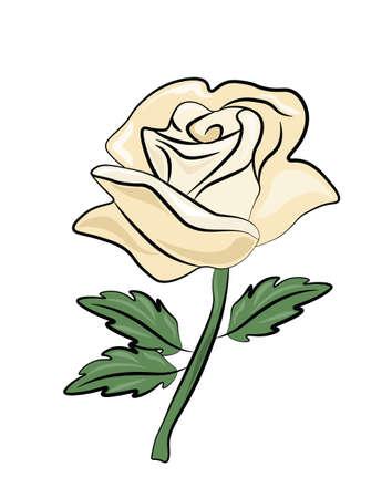 heartbreak: White Rose abstract texture background. Vector Illustration