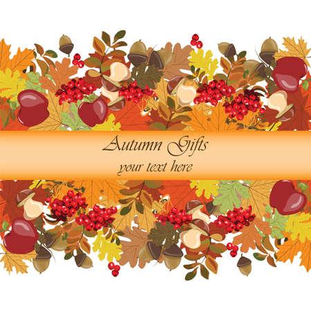 Fondo del otoño con manzanas, bayas rojas del viburnum y las hojas. Vector Ilustración de vector