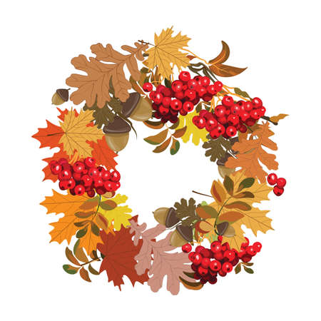 autumnal: Beautiful autumnal frame of maple leaves, red viburnum and nuts. Vector Illustration