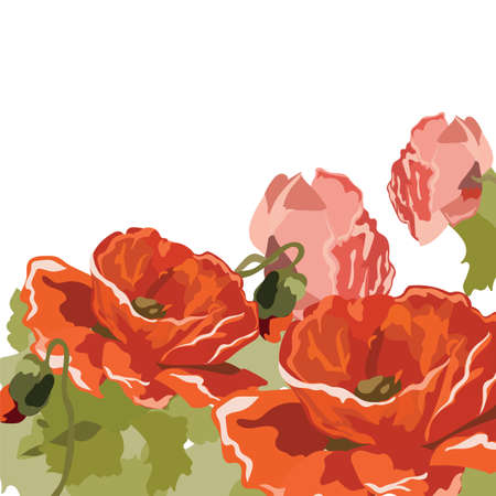gently: Vintage Watercolor poppy flowers background. Vector Retro floral background