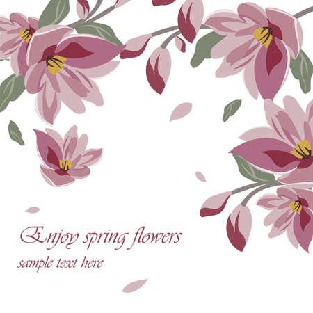 magnolia: Flower Blossom Spring Magnolia background. Vector floral illustration