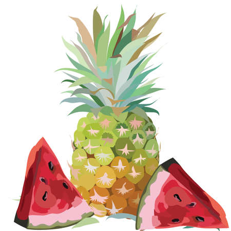 pine apple: Watercolor Pineapple and Watermelon isolated on white background Vector