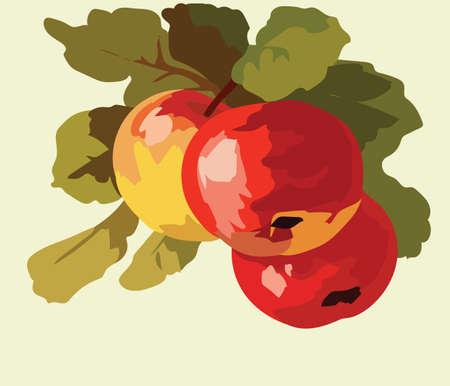 Apple fruits Watercolor Vector Illustration