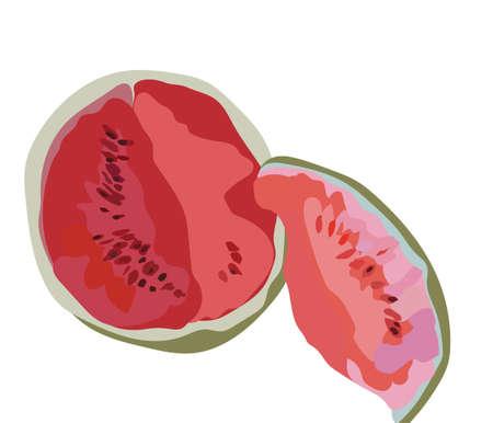 and technique: Watermelon Isolated on white, Watermelon fruit in watercolor technique Vector. Juicy Watermelon, Watermelon Slice Illustration