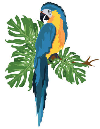 Parrot sitting on a tree branch isolated. Vector tropical birds