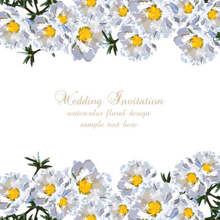 aster: Wedding Invitation delicate aster flowers card. Spring Summer Flower Banner for greeting cards and invitations of wedding, birthday, mothers day and other seasonal holiday