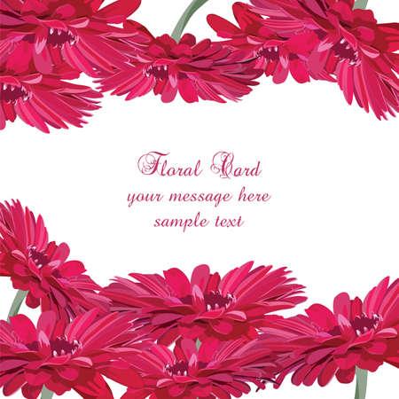 gerbera: Gerbera pink flower card. Vector floral background for greetings, wedding, invitation, posters