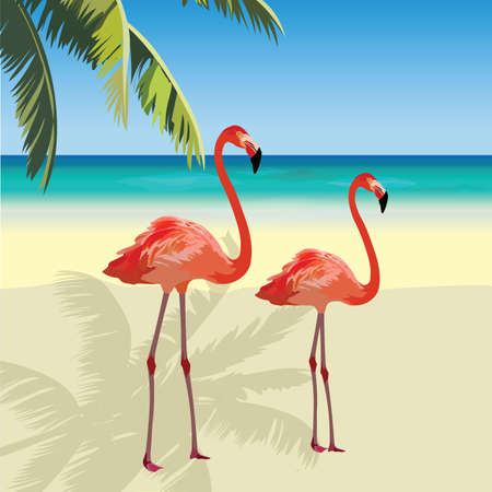 Two flamingo birds at Tropic Beach. Summer Vector Travel card. Exotic background Illustration