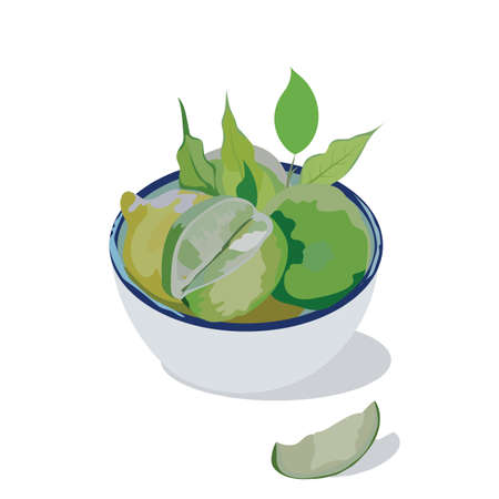 Fresh lime in a white bowl Vector