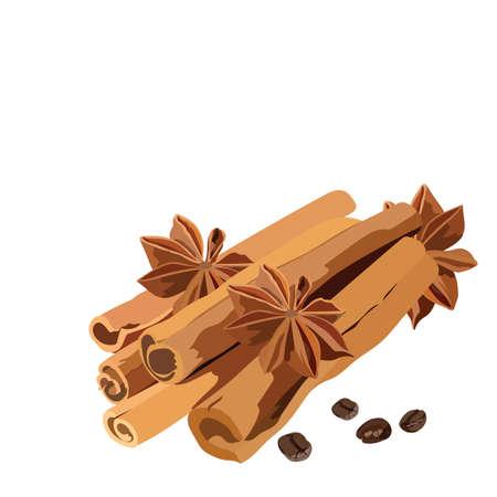 Cinnamon sticks and anise star Vector isolated Illustration