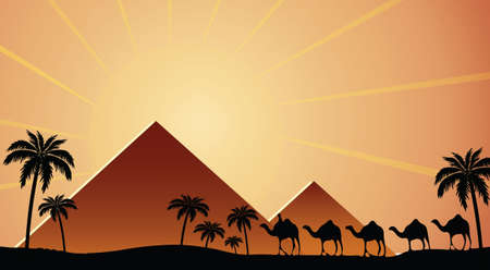 camels: Egyptian pyramids at sunset with camels walking Vector illustration
