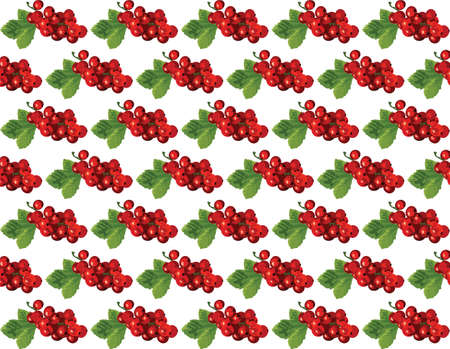 cranberries: Cranberries Vintage pattern Vector. Watercolor painting. Red berry, green colors Illustration